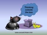 Thinking Outside the Box bugs